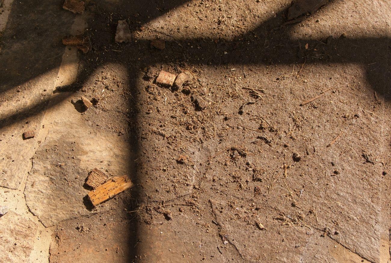 como-descartar-pó-de-madeira